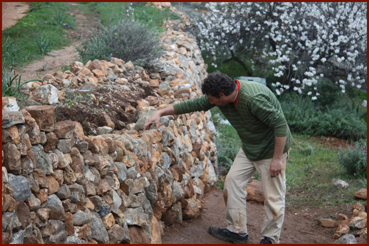 drystone_wall_restoration